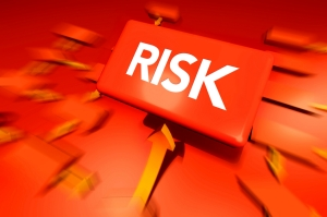 pbVerify Risk Management
